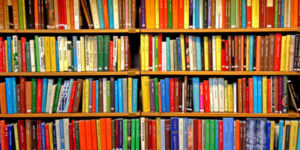 Biblioteca virtual se suma a los servicios online del que dispone la comunidad estudiantil