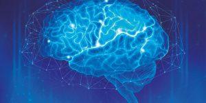 """Charla del Dr. Terrence Deacon sobre la """"Evolución del Cerebro"""""""