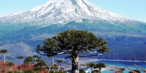 «Desafío Descubre Araucanía» selecciona 8 proyectos para potenciar el turismo en la región