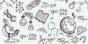Convocatoria programa de Iniciación Científica 2020