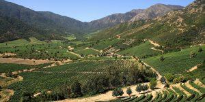 IDC-Chile 2020: comunas del Maule registran bajos promedios de desarrollo económico